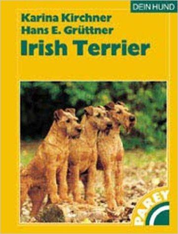 irish_terrier