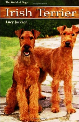 irish_terrier_2